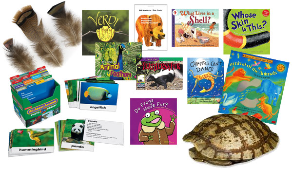 Sample inventory for Kindergarten's Creature Features learning trunk